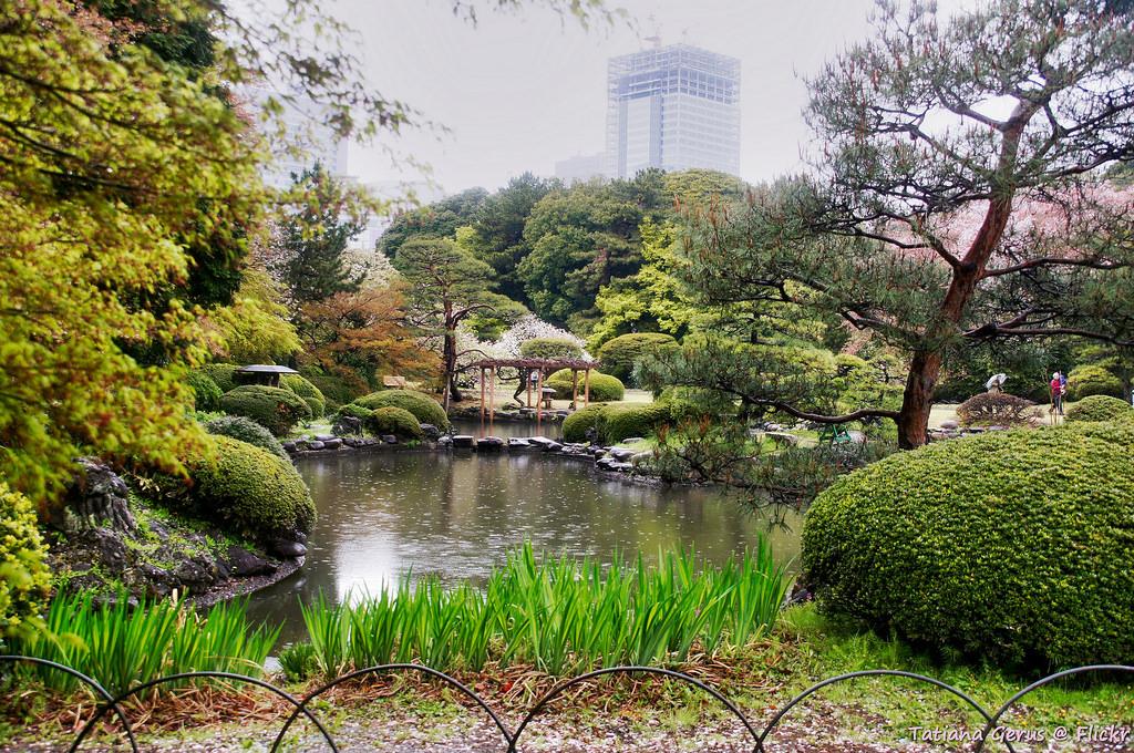 photo credit: Shinjuku Gyoen National Garden via photopin (license)