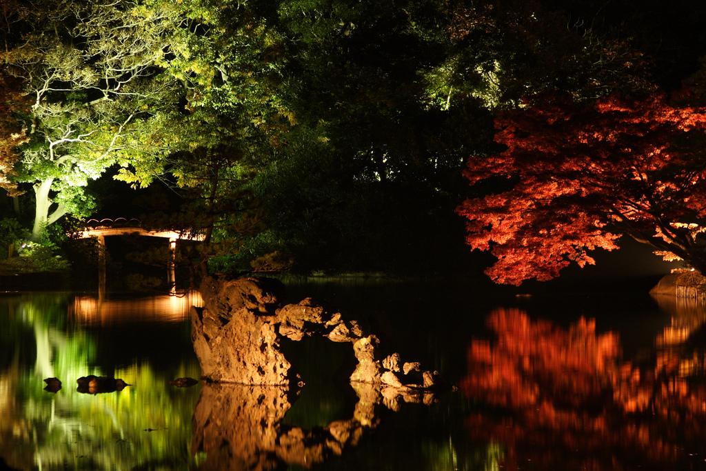 photo credit: Rikugien Garden via photopin (license)