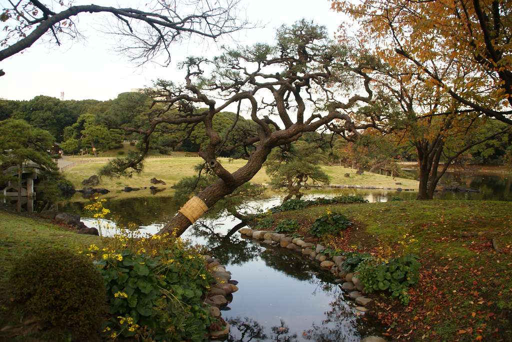 photo credit: Hama-rikyū Gardens (浜離宮恩賜庭園) via photopin (license)