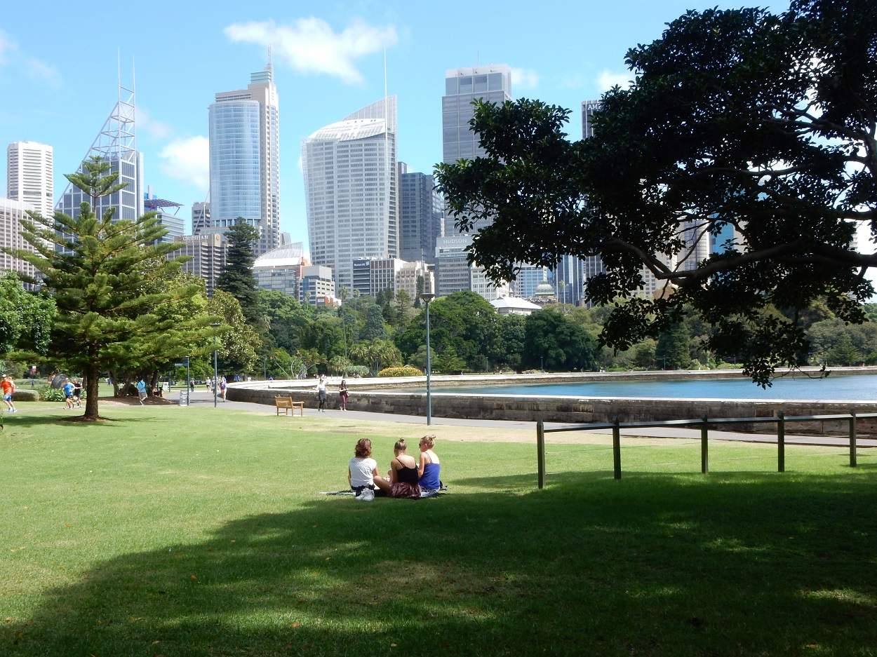There's lots of lawns and chairs spread across the botanical gardens to sit and take in the views.