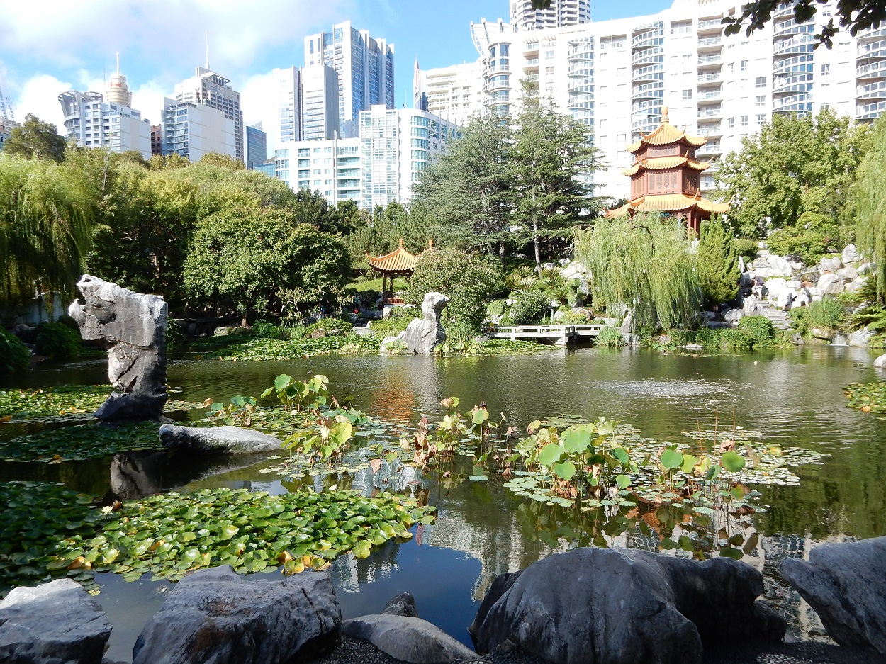 The Chinese Friendship is an oasis of zen near Darling Harbour