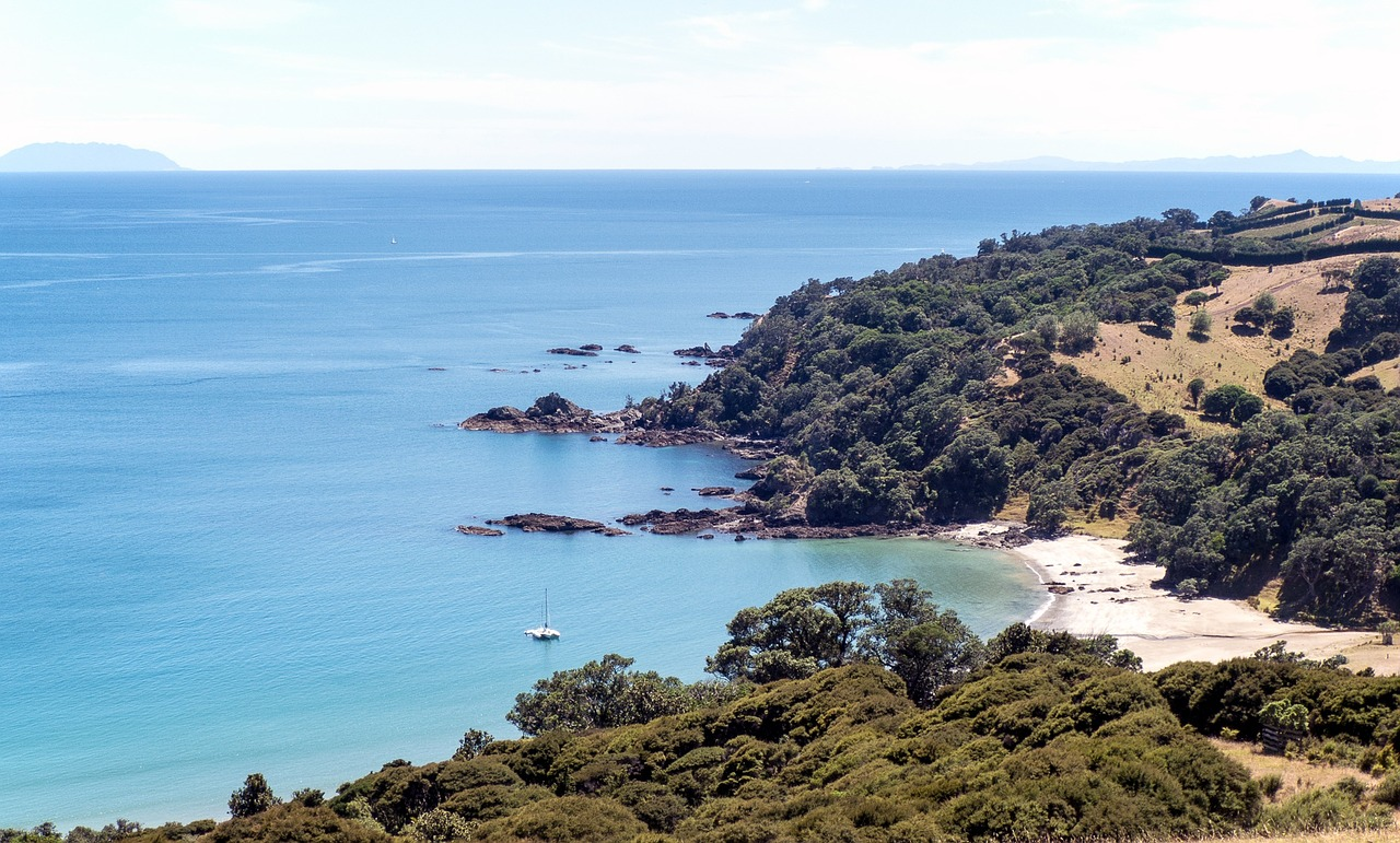 Waiheke's beautiful coastline