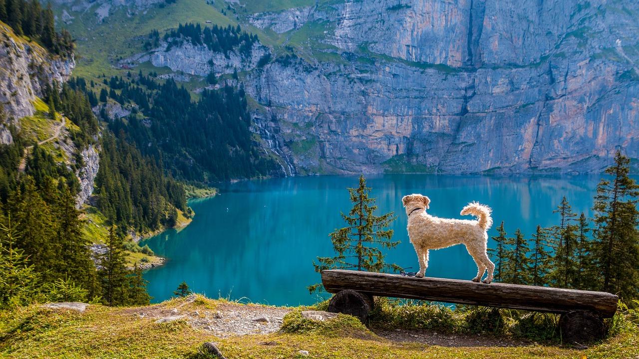 Switzerland has an endless supply of beautiful lakes
